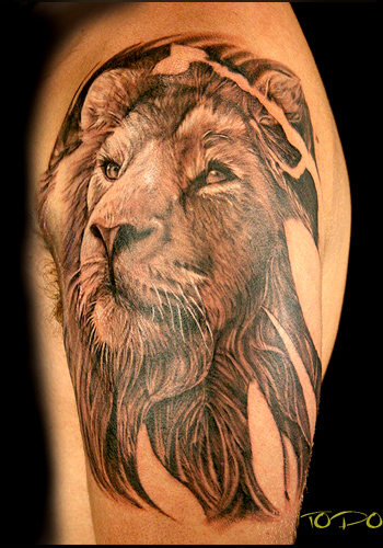 lion head tattoo. Lion head tattoo on shoulder.