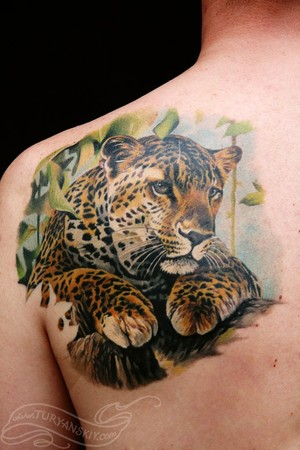 Power leopard tattoo on shoulder blade.