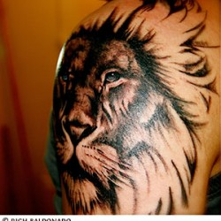 A lion tattoo on man&#039;s left arm.