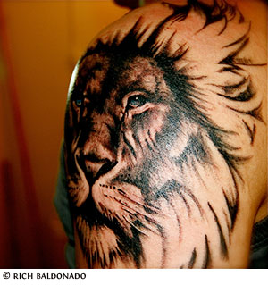 Lion Tattoo Design on Arm