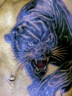 Strength panther tattoo on stomach.