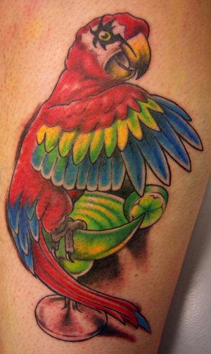 Parrot Tattoo Design Best