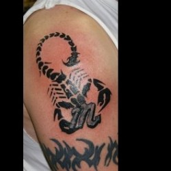 A man has tattooed tribal scorpion with sign tattoo design on his arm.