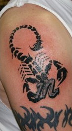 Scorpion Tribal Tattoo | Cool Animal Tattoos